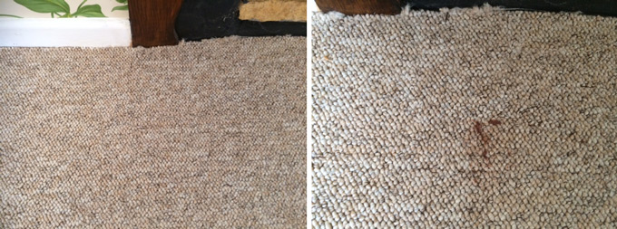Rutland Cleaning Before and After Spot Cleaning