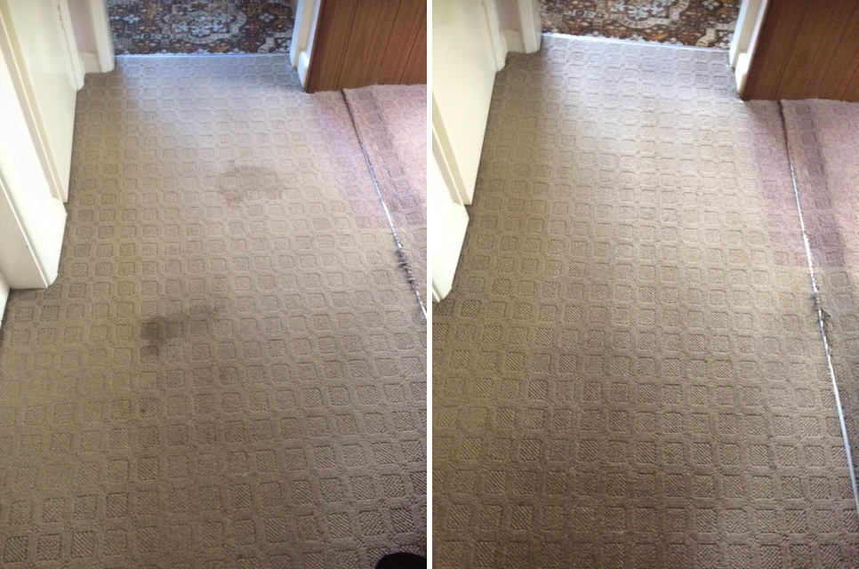 Rutland Cleaning Company Large Stain Before