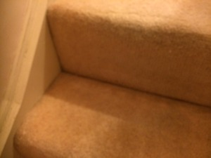carpet cleaning Oakham