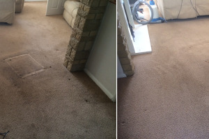 Lounge Carpet Before & After Cleaning