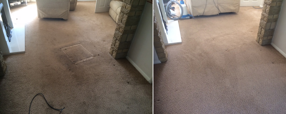 Rutland Cleaning Company Lounge Carpet Before