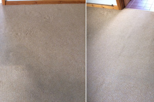 Living Room Carpet Before & After Cleaning