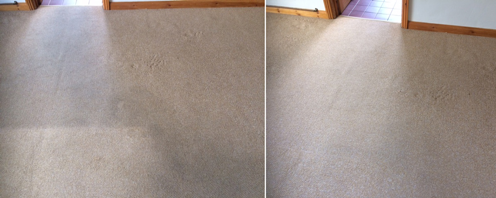 Rutland Cleaning Company living Room Carpet Before After