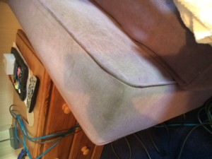 Upholstery cleaning rutland