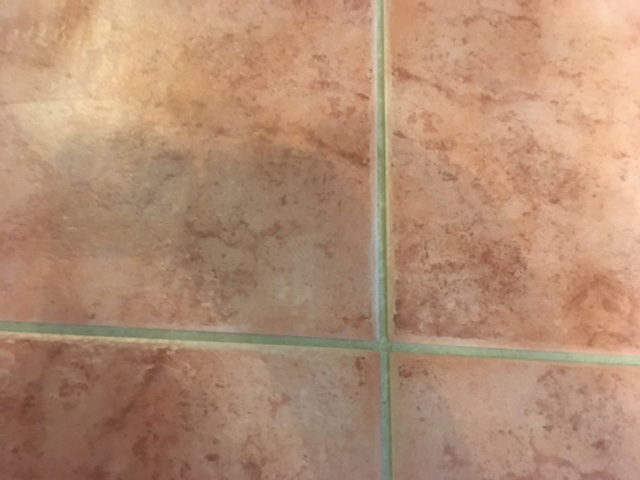grout cleaning - looking better